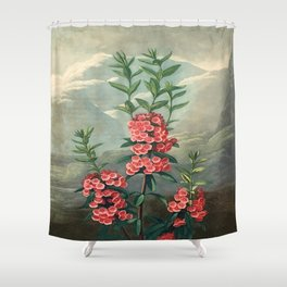 Pink Floral The Narrow-leaved Kalmia : Temple of Flora Shower Curtain
