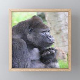 Gorilla 519-2 Framed Mini Art Print