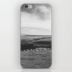 Small Camp iPhone & iPod Skin