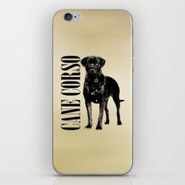 Cane Corso - Italian Mastiff iPhone Skin