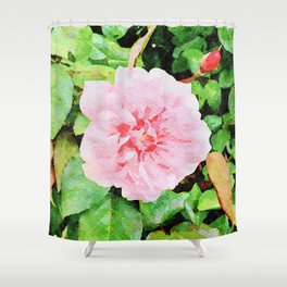 Pink Rose Beauty (watercolor) Shower Curtain