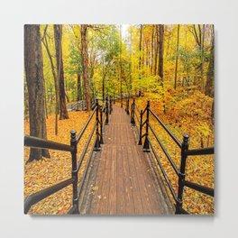 Canada, Forest Walking Trail Metal Print
