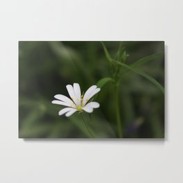 Beauty In It's Place Metal Print