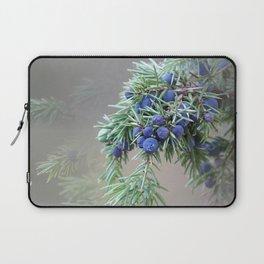 Juniper berries (seed cones) Laptop Sleeve