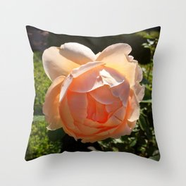 Dahlia - Pink - 2014 Throw Pillow