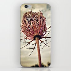 Between ground and sky iPhone & iPod Skin
