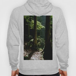 Light in tropical rainforest Hoody
