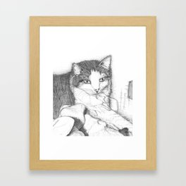 House Cat Framed Art Print