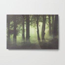 Wispy Forest Mists Metal Print