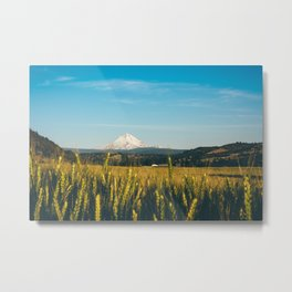 Golden Grain Fields Overlooking Cascade Mountains Metal Print