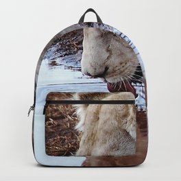 Not just a puddle but survival Backpack