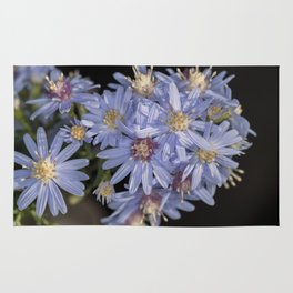 Tiny Blue Wood Aster Flowers Rug