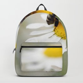Biene auf der Kamille Wiese Backpack