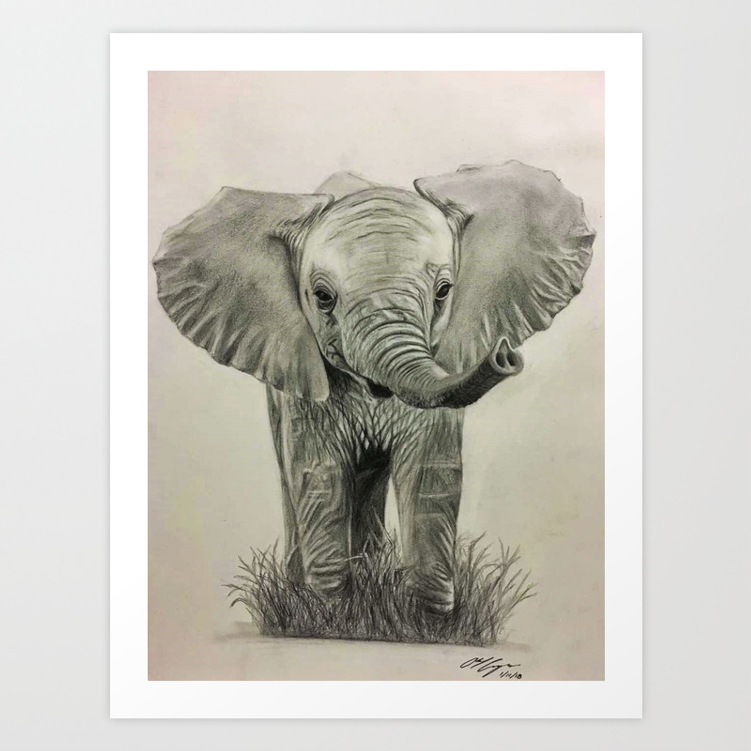 Baby elephant pencil drawing art print