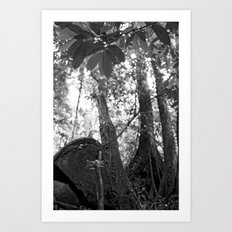 Umbilical Art Print