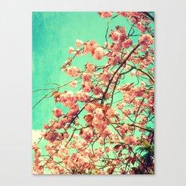 vintage Cherry blossoms  Canvas Print