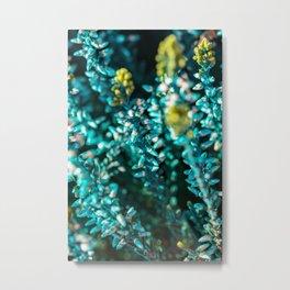 Blue Macro Flower Metal Print