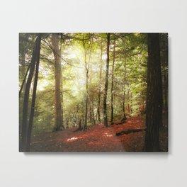 Magic Forest Metal Print