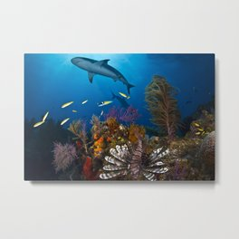 Predators Metal Print