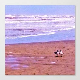 Love Birds on the Beach Canvas Print