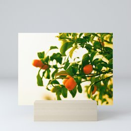 The juicy and splendid fruit of summer Mini Art Print