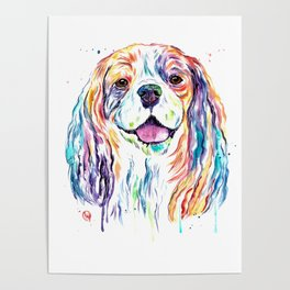 Cavalier King Charles Spaniel - Colorful Watercolor Painting Poster