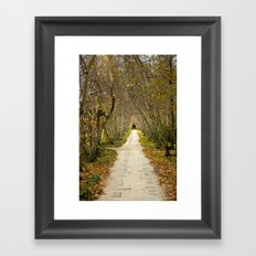 Down the Path Framed Art Print