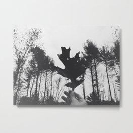 Autumn 16 Metal Print