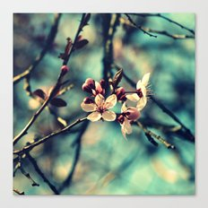 Blooming Beautiful Canvas Print