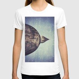 Stupa T-shirt