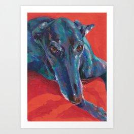 Greyhound on Red Art Print