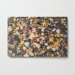 Autumn Floor Metal Print