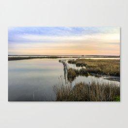 Wildgrass Along the Chesapeake Bay Canvas Print