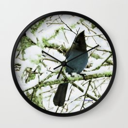 Steller's Jay in the Snow Wall Clock