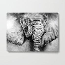 elefantito Metal Print