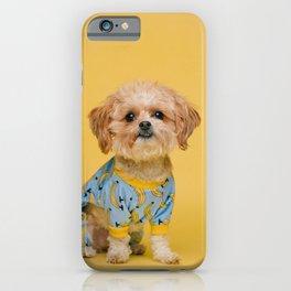 Cute Cockapoo In Banana Pyamas iPhone Case