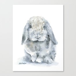 Mini Lop Gray Rabbit Watercolor Painting Canvas Print