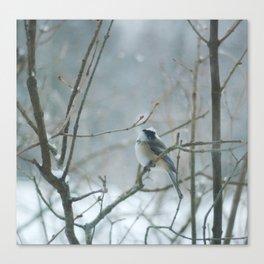 Crown of Snow Canvas Print