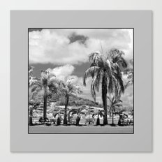 Palm Trees in the Suburbs Canvas Print