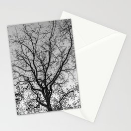 Black and white naked tree Stationery Cards