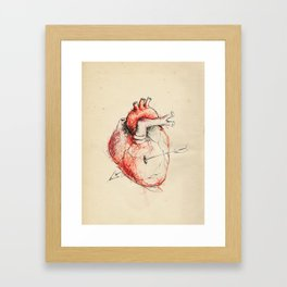 Cabinet of Curiosities No.5 Framed Art Print