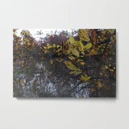 Within the Trees  Metal Print