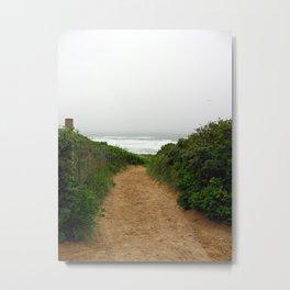 Beach Path (Colour) Metal Print