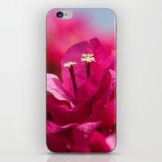 Bougainvillea 843 iPhone & iPod Skin
