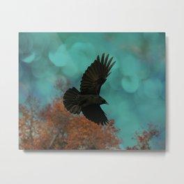 Soaring Crow Metal Print