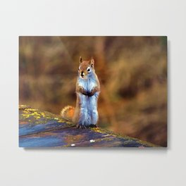 Cute Little Squirrel Artwork Metal Print