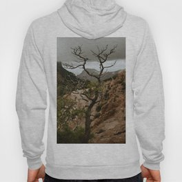 Colorful Mountaintop View with Withered Tree - Big Bend Hoody