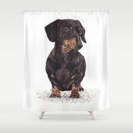 Dog-Dachshund Shower Curtain