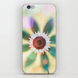 Pinwheel iPhone Skin