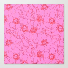 Australian Waxflower Line Floral in Pink Canvas Print